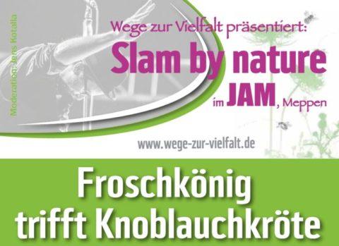 17.11.18: Slam by nature II